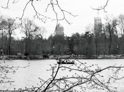 La Skyline, vue du parc de la Tête d'Or