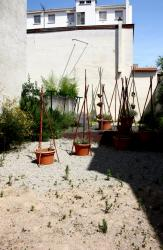 [Jardin éphémère, 3 rue Léon Chomel, Villeurbanne]