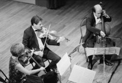 [Festival Les Musicades (1989)]