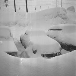 La neige à Lyon