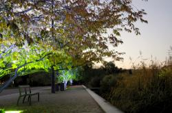 Le Parc de Gerland