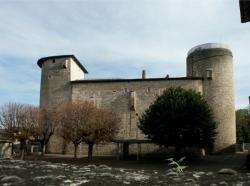 Anse, le Château des Tours, vue générale
