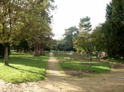 Anse, parc de la Roseraie.