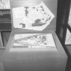 Avenir de Lyon : Projets et maquettes