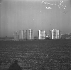 Quartier des Minguettes : Les nouveaux Immeubles à Vénissieux