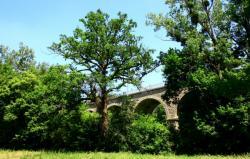 Francheville, vallée de l'Yzeron, le viaduc