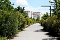 [Parc Sergent Blandan, le front forestier, 7e arrondissement]