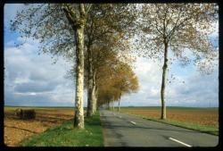 [Route nationale 36 de Villefranche-Sur-Saône à Bourg-en-Bresse]