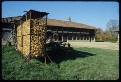[Saint-Cyr-de-Menthon (Ain) : ferme bressane des Plannonds]