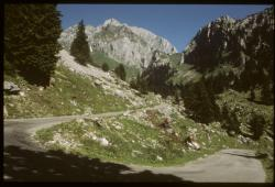 [Route de l'Alpage de Bise]