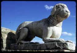 [Sculpture de chien, théâtre romain Fourvière]