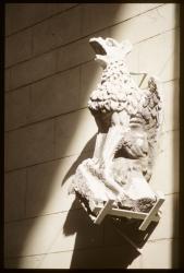 [Gargouille de l' église Saint-Nizier]