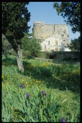 [Château, Suze-la-Rousse]