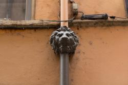 Descente d'eaux pluviales en fonte