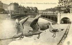 Lyon - Le Nouveau Pont de La Feuillée