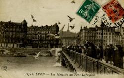Lyon - Les mouettes au Pont Lafayette