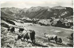 L'Auvergne pittoresque : Vallée de Chaudefour.
