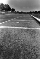 [Stade d'athlétisme du Parc de Parilly à Vénissieux]