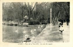 Lyon : Parc de la Tête-d'Or ; Le Coin des Cygnes.