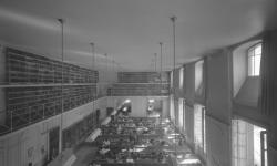 Reportage sur les bibliothèques dans la vie lyonnaise