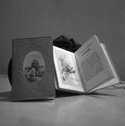 Enquête sur le Livre à Lyon