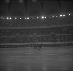 Championnat de patinage au Palais des Sports