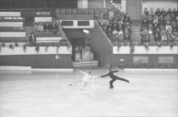 Patinage artistique avec remise de prix : Palais des Sports