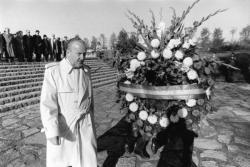 [Commémorations au cimetière national de La Doua]