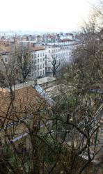 Rue Adamoli