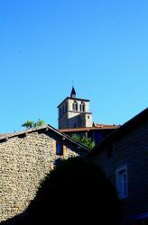 [Saint-Symphorien-sur-Coise, Eglise Collégiale, vue de la porte Riverie]