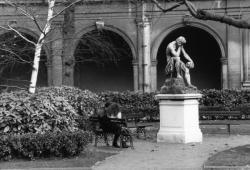 [Jardin du Palais Saint-Pierre]