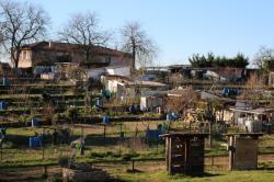 Jardins ouvriers, Montchat