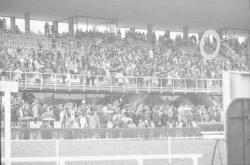 Courses de chevaux à Parilly