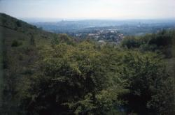 [Les Monts-d'Or, du Mont-Cindre vers Lyon]
