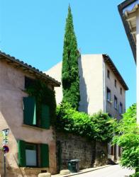 Rue Jean-Baptiste Simon, Sainte-Foy-lès-Lyon