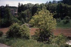 [Curis-au-Mont-d'Or (Rhône)]