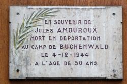 19, rue Cuvier