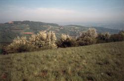 [Le Mont Verdun (Rhône)]