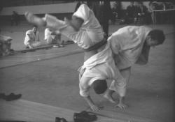 Démonstration de judo