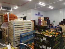 Etals au marché de gros de Lyon-Corbas