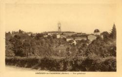 Grézieu-la-Varenne (Rhône). - Vue générale