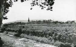 Gleizé (Rhône). - Vue générale