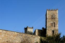 Château d'Ombreval, Vieux Château, Neuville-sur-Saône