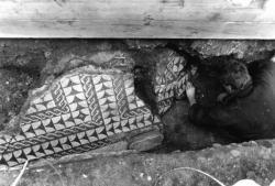 [Fouilles archéologiques de la place des Célestins. Découverte d'une nouvelle mosaïque gallo-romaine]