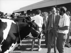 [1er Concours de vaches laitières Frisonnes de Corbas (1986)]