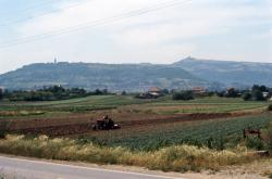 [Zone maraîchère de Rillieux-la-Pape (Rhône)]