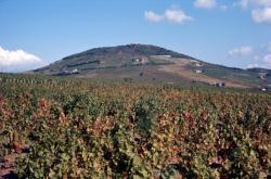 [Le Mont Brouilly (Rhône)]