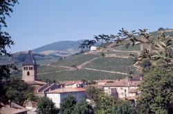 [Beaujeu (Rhône)]