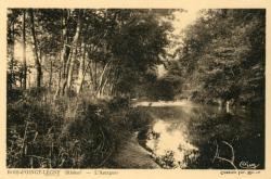 Bois-d'Oingt-Légny (Rhône). - L'Azergues