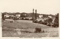 Marcy-l'Etoile (Rhône). - Bois de l'Etoile